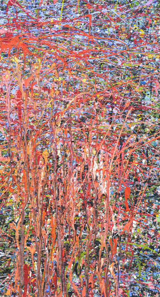 David Komander, oil/canvas 70 x 50cm, 2010